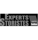 Experts Storistes Logo